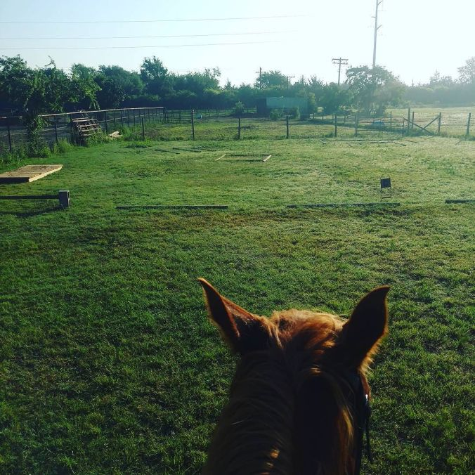 Dressage_tracks_first_thing_in_the_morning__knotsy__eventer